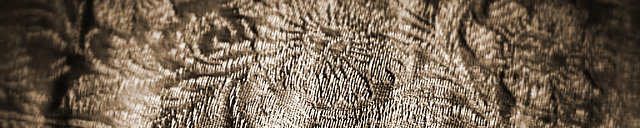 velvet_brocade_fabric_header