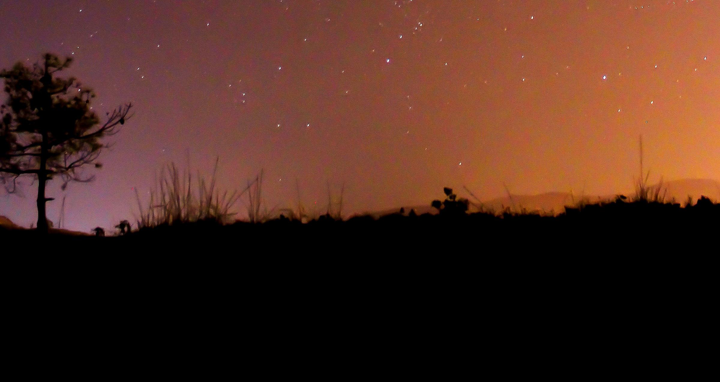 Dimitris Adalialis tree horizon stars