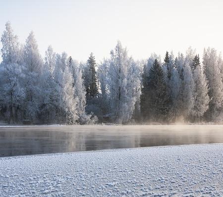 Finland, snow, trees, winter