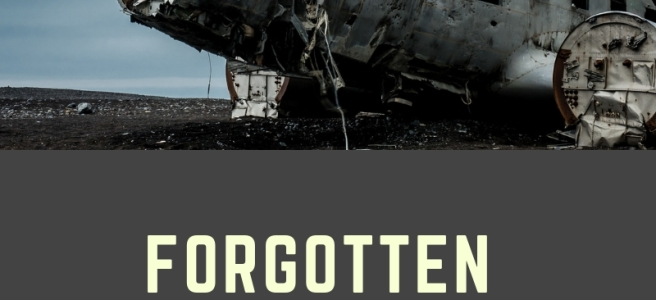 Blog header forgotten book now available