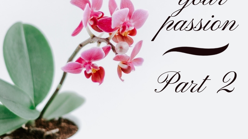 Blog Header Image Rediscovering your passion part 2