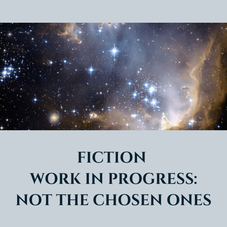 Blog header Fiction work in progress not the chosen ones
