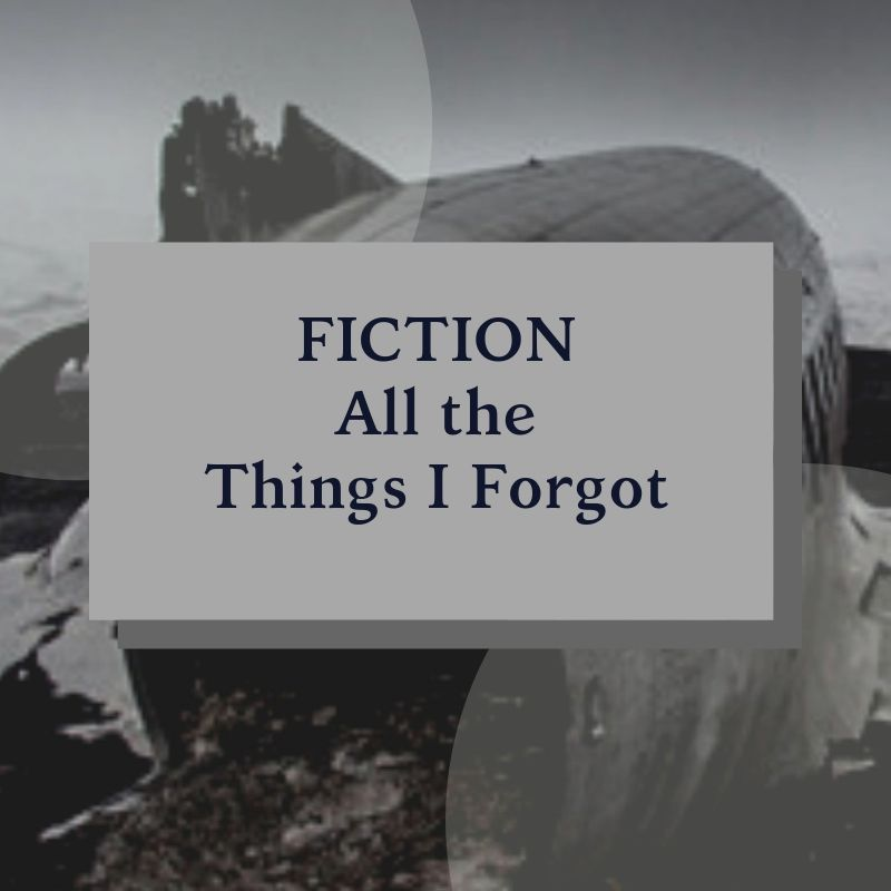 Fiction Excerpt Blog Header