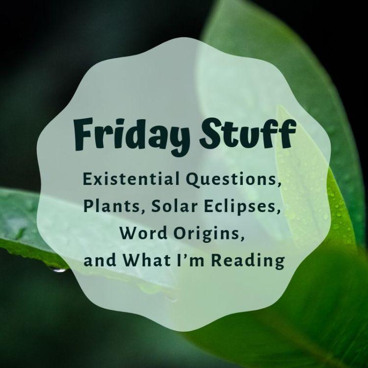 Blog Header for Friday Stuff